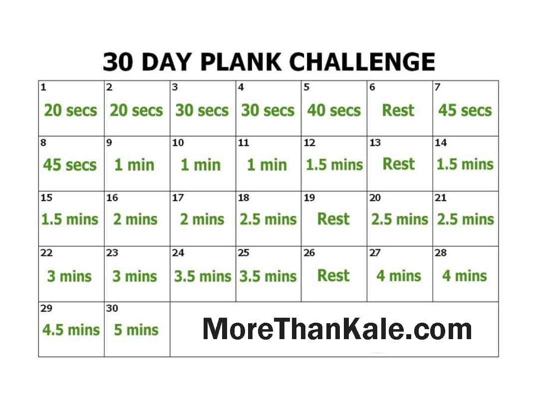 photo relating to 30 Day Squat Challenge Printable identified as State-of-the-art 30 Working day Plank Dilemma Printable PDF Calendar